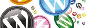 marbella wordpress design, wordpress plugins and theme installation.
