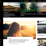 twenty fifteen wordpress theme for 2015