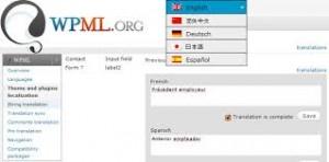 wordpress-multilingual-plugin-from-WPML