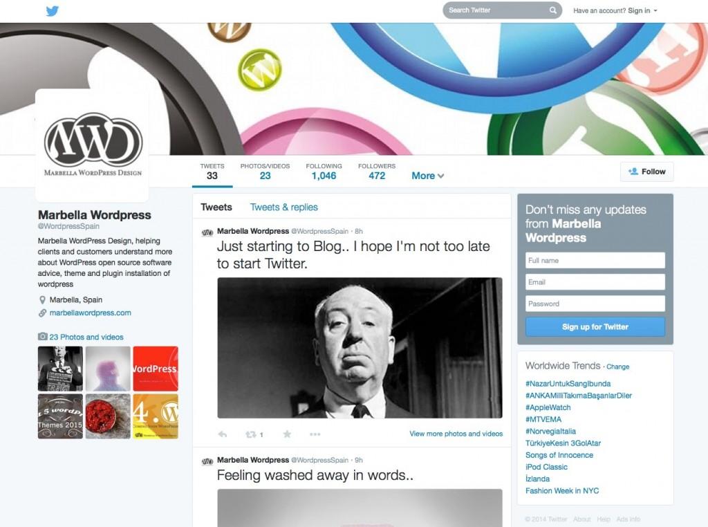 2014-twitter-dimensions-marbella-wordpress-design-tips