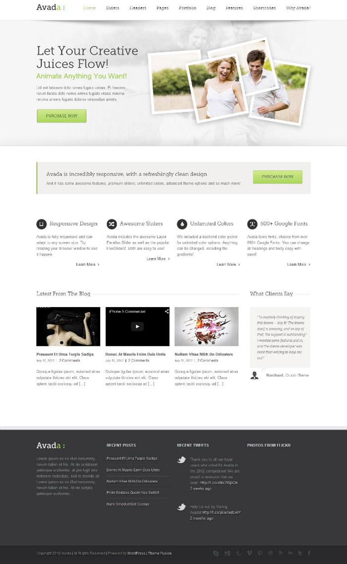 best-wordpress-theme-2014-Avada