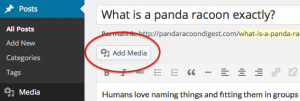 wordpress-add-media-button