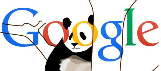 google-panda-wp-marbella-2